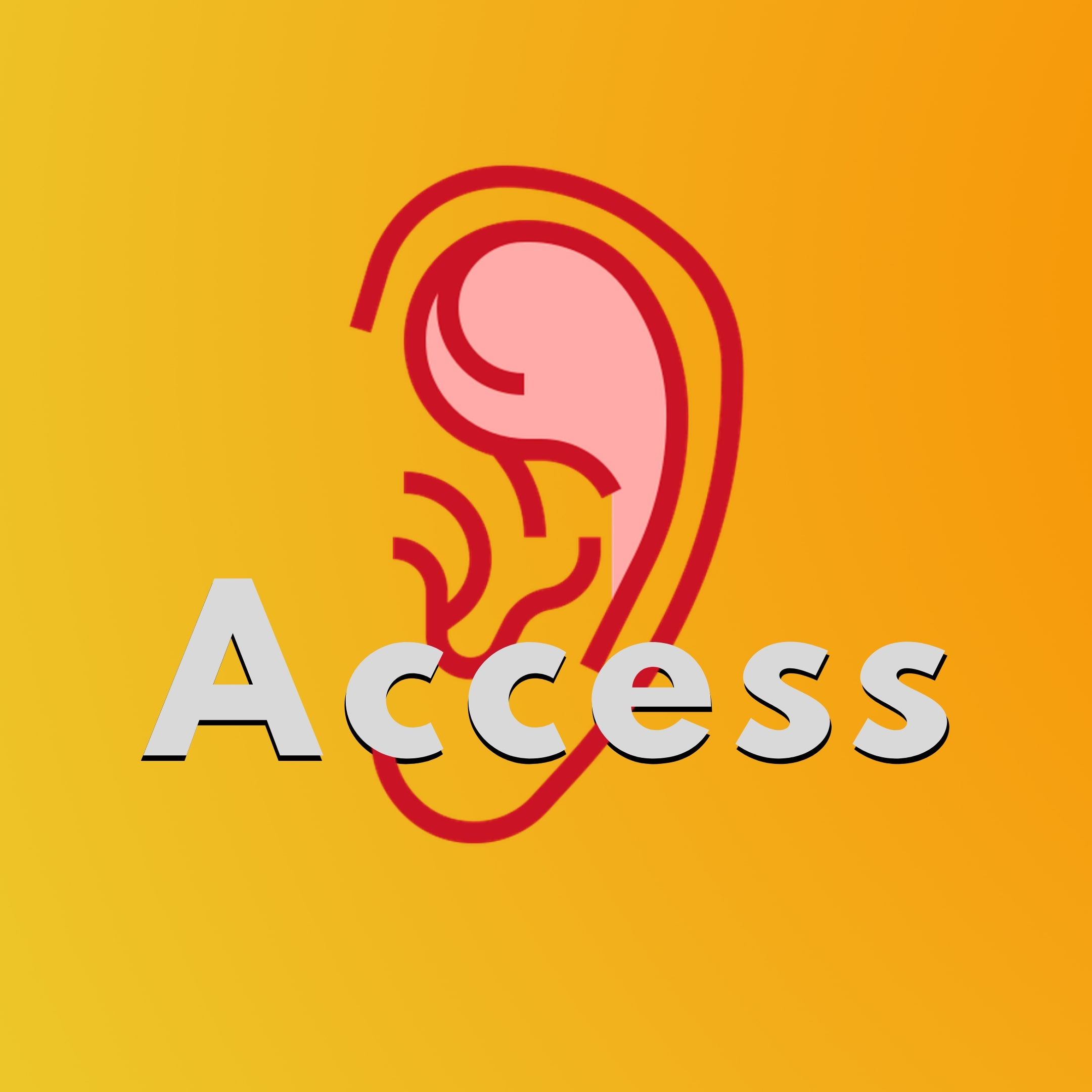 imagem access.jpg
